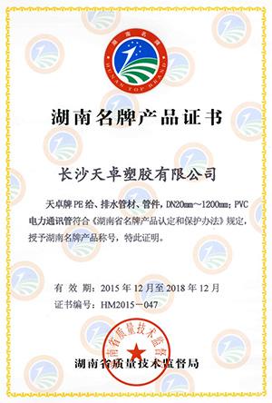 湖南省名牌产品2016